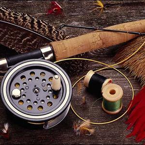 Охотничьи и рыболовные магазины Шексны